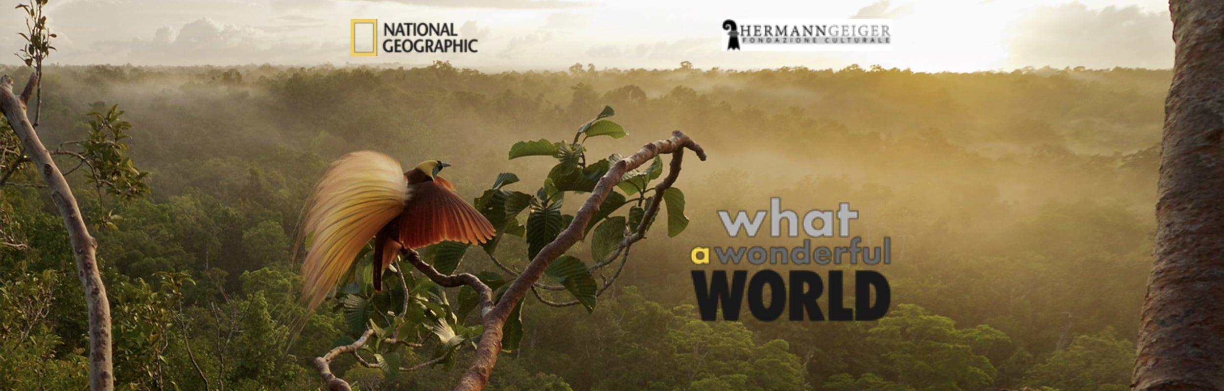 Un viaggio tra le meraviglie della natura attraverso gli scatti della National Geographic Society
